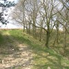 Bridle path near Giedd River