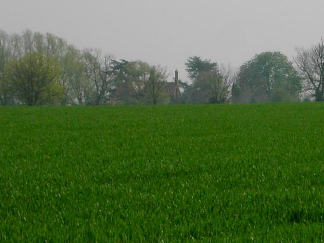 Across Field to Stanford Bury Farm