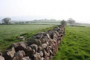 Upper Fernyhill Farm from Ferny Hill