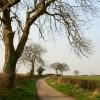 Evershill Lane