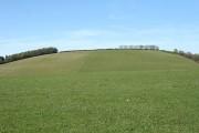 Bishop's Nympton: towards Blastridge Hill