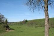 South Molton: Mole valley