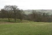 Farmland, Blackton