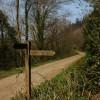 Public Bridleway sign, Brownsham Wood