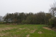 Looking back towards the remainder of Square Plantation