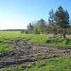 Field near Spennymoor