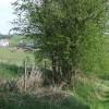 Public Footpath, Barnsley, Shropshire