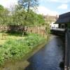 The River Allen near Somerfields