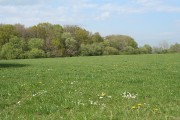 Woolfardisworthy: near Brownstone Moor Cross