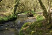 The river Waldon
