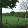 Fields and Woodland, Lower Hopstone, Shropshire