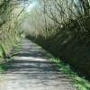 The Tarka Trail near Sowford Moor