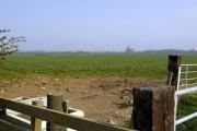 Field near New Haggerston