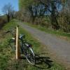 The Tarka Trail near Winswell
