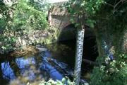 Bridge and weir