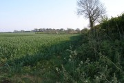 View over arable land