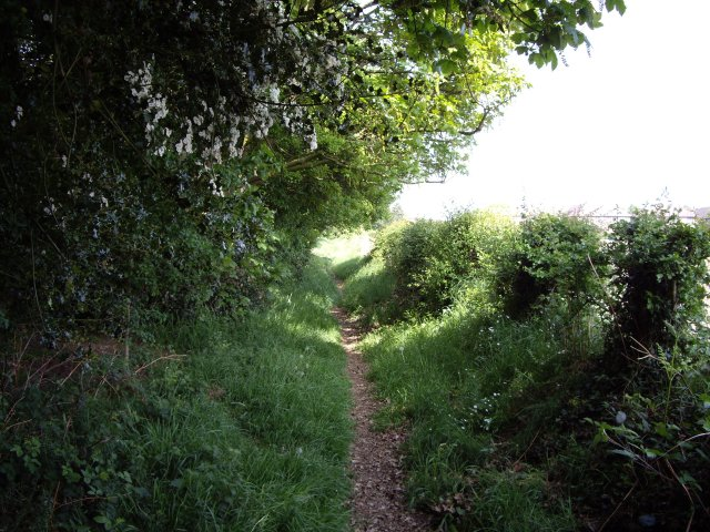 Footpath into Wybunbury