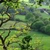 Furzeleigh Down Farm