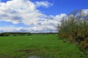 High Dubwath Farmland