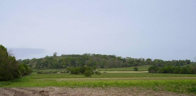 Pedwell Hill