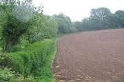 Farmland near Kilmington