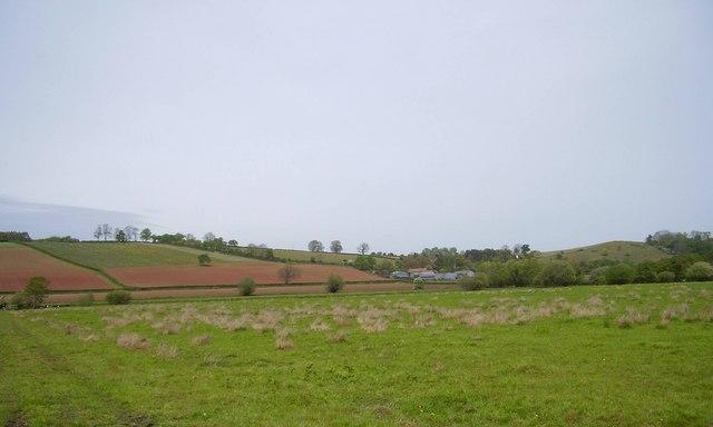 Priest Hill