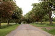 The driveway to The Lodge