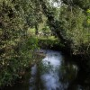 River Lew