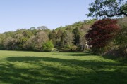 Bow Cottage and Sydenham Wood