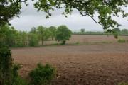 Farmland north of Sudbury