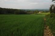 Farmland at Briery Hill