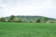 View towards Fiddleford and Piddles Wood