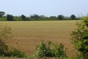 Field south of Yapton road Barnham