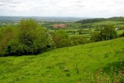 Herefordshire Countryside