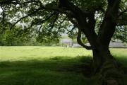 Farm above Summerbridge