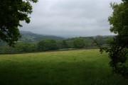 Nidderdale, near Old Spring Wood