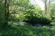 South Molton: the river Bray