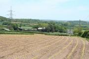 Chittlehampton: towards Whitstone Farm