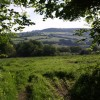 View from Pudleylake Road