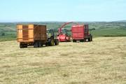 Swimbridge: grass harvest