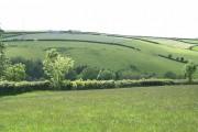 Swimbridge: near Wrimstone