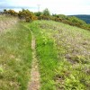 Path at the top of Redgate Hill