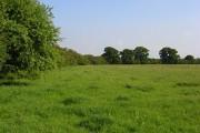 Pasture, Highworth