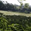 Field at Bulmoor