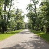 The main drive through Dunham Park (Dunham Massey)