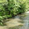 Werrington: river Tamar