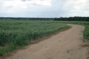 Farmland at Manor Farm, Southoe