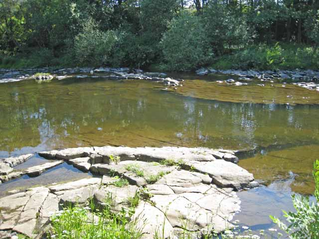 Pool on the River Wear
