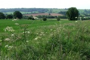 Across the Fields near Morville, Shropshire