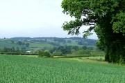 Rural Shropshire, near Morville